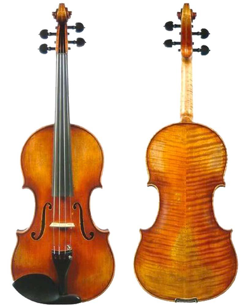viola1